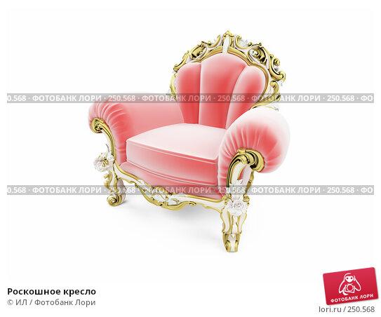 Роскошное кресло, иллюстрация № 250568 (c) ИЛ / Фотобанк Лори