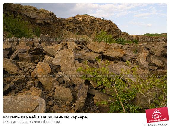 Россыпь камней в заброшенном карьере, фото № 286568, снято 8 мая 2008 г. (c) Борис Панасюк / Фотобанк Лори