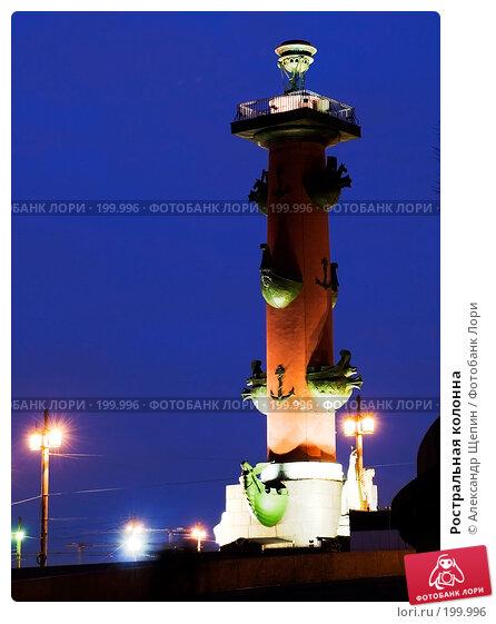 Ростральная колонна, эксклюзивное фото № 199996, снято 1 декабря 2007 г. (c) Александр Щепин / Фотобанк Лори