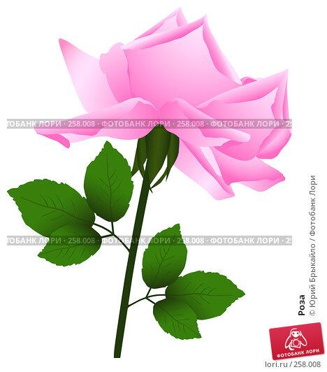 Купить «Роза», иллюстрация № 258008 (c) Юрий Брыкайло / Фотобанк Лори
