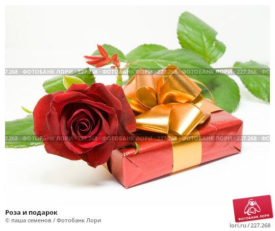Роза и подарок, фото № 227268, снято 31 августа 2007 г. (c) паша семенов / Фотобанк Лори
