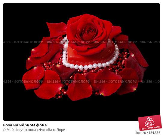 Роза на чёрном фоне, фото № 184356, снято 7 января 2008 г. (c) Майя Крученкова / Фотобанк Лори