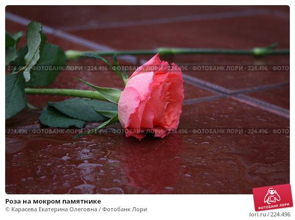 Роза на мокром памятнике, фото № 224496, снято 23 февраля 2008 г. (c) Карасева Екатерина Олеговна / Фотобанк Лори