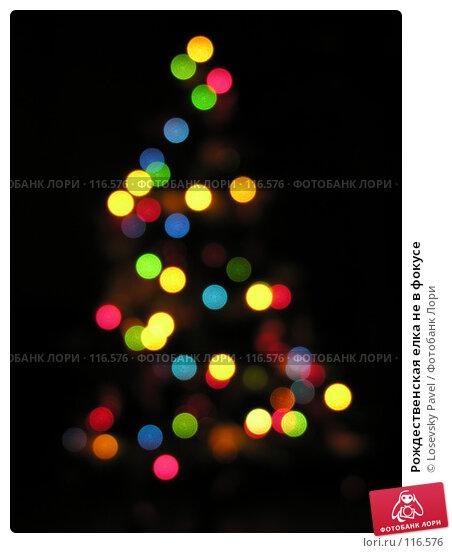 Рождественская елка не в фокусе, фото № 116576, снято 27 декабря 2005 г. (c) Losevsky Pavel / Фотобанк Лори