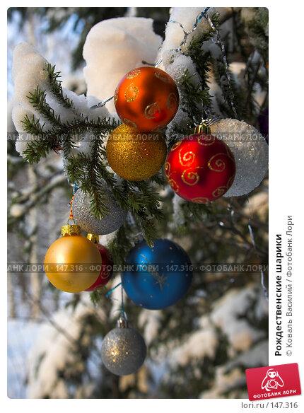 Рождественские шарики, фото № 147316, снято 10 ноября 2007 г. (c) Коваль Василий / Фотобанк Лори