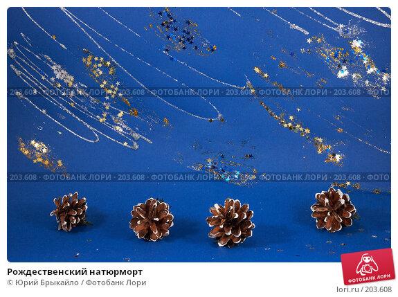 Рождественский натюрморт, фото № 203608, снято 25 ноября 2007 г. (c) Юрий Брыкайло / Фотобанк Лори