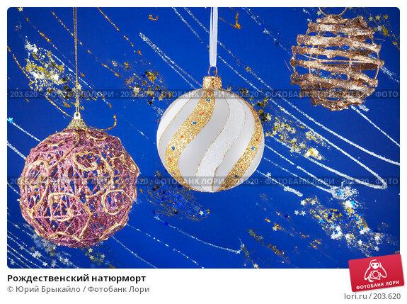 Рождественский натюрморт, фото № 203620, снято 25 ноября 2007 г. (c) Юрий Брыкайло / Фотобанк Лори