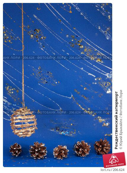 Рождественский натюрморт, фото № 206624, снято 2 декабря 2007 г. (c) Юрий Брыкайло / Фотобанк Лори