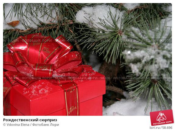 Рождественский сюрприз, фото № 58696, снято 30 ноября 2006 г. (c) Vdovina Elena / Фотобанк Лори