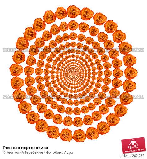 Розовая перспектива, иллюстрация № 202232 (c) Анатолий Теребенин / Фотобанк Лори