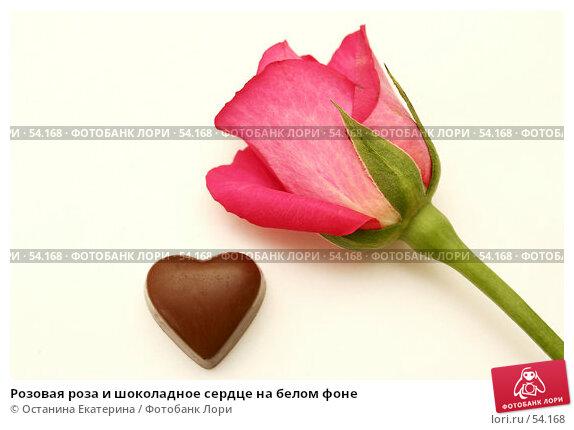 Розовая роза и шоколадное сердце на белом фоне, фото № 54168, снято 8 марта 2007 г. (c) Останина Екатерина / Фотобанк Лори