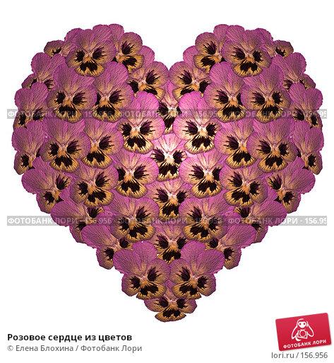 Розовое сердце из цветов, фото № 156956, снято 26 февраля 2017 г. (c) Елена Блохина / Фотобанк Лори