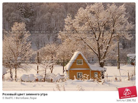 Розовый цвет зимнего утра, фото № 208752, снято 18 декабря 2007 г. (c) RedTC / Фотобанк Лори