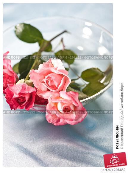 Розы любви, фото № 226852, снято 3 августа 2005 г. (c) Кравецкий Геннадий / Фотобанк Лори