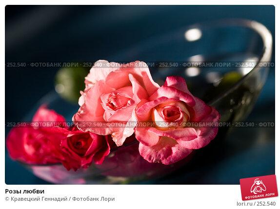 Розы любви, фото № 252540, снято 3 августа 2005 г. (c) Кравецкий Геннадий / Фотобанк Лори