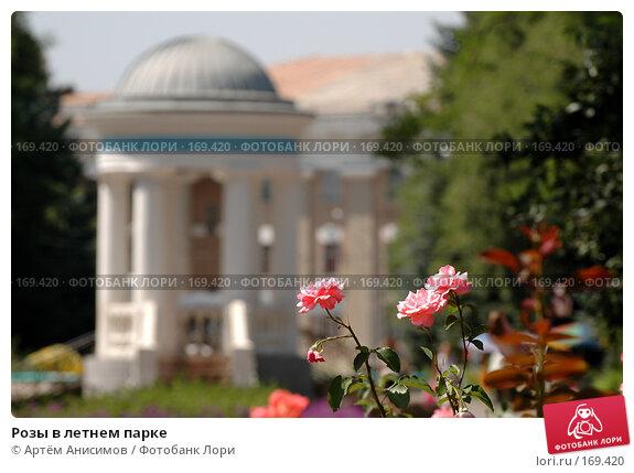 Розы в летнем парке, фото № 169420, снято 26 июля 2005 г. (c) Артём Анисимов / Фотобанк Лори