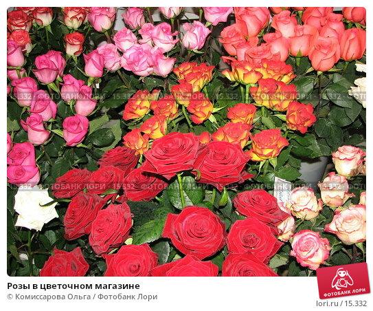 Розы в цветочном магазине, фото № 15332, снято 11 декабря 2006 г. (c) Комиссарова Ольга / Фотобанк Лори