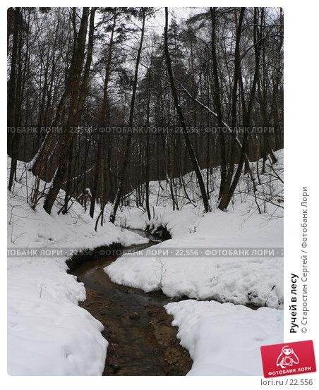 Ручей в лесу, фото № 22556, снято 22 февраля 2017 г. (c) Старостин Сергей / Фотобанк Лори