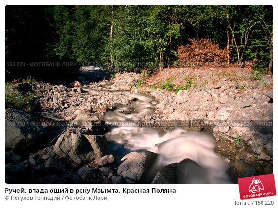 Ручей, впадающий в реку Мзымта. Красная Поляна, фото № 150220, снято 13 августа 2007 г. (c) Петухов Геннадий / Фотобанк Лори