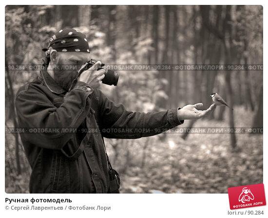 Купить «Ручная фотомодель», фото № 90284, снято 20 апреля 2018 г. (c) Сергей Лаврентьев / Фотобанк Лори