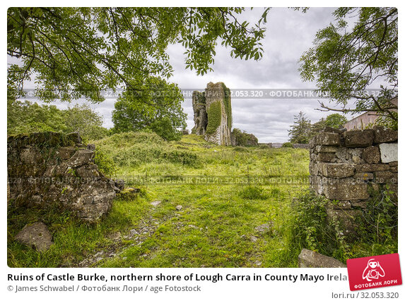 Ruins of Castle Burke, northern shore of Lough Carra in County Mayo Ireland. Стоковое фото, фотограф James Schwabel / age Fotostock / Фотобанк Лори