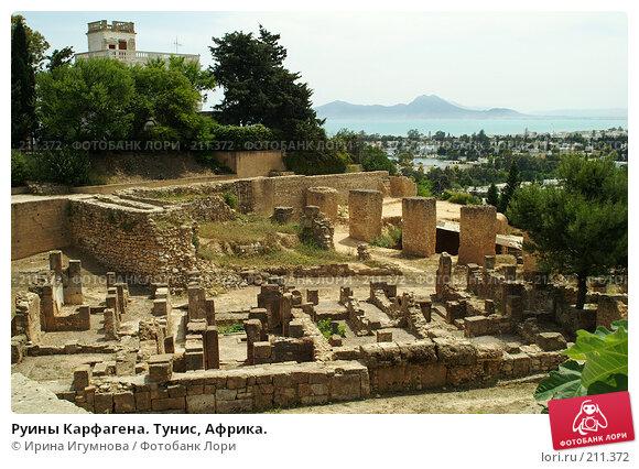 Купить «Руины Карфагена. Тунис, Африка.», фото № 211372, снято 12 июня 2006 г. (c) Ирина Игумнова / Фотобанк Лори