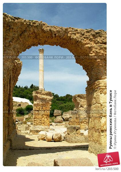 Руины римских бань в Тунисе, фото № 203500, снято 12 июня 2006 г. (c) Ирина Игумнова / Фотобанк Лори