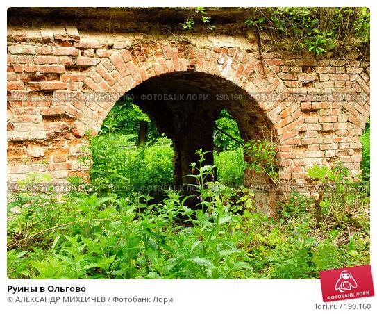 Купить «Руины в Ольгово», фото № 190160, снято 17 июня 2006 г. (c) АЛЕКСАНДР МИХЕИЧЕВ / Фотобанк Лори