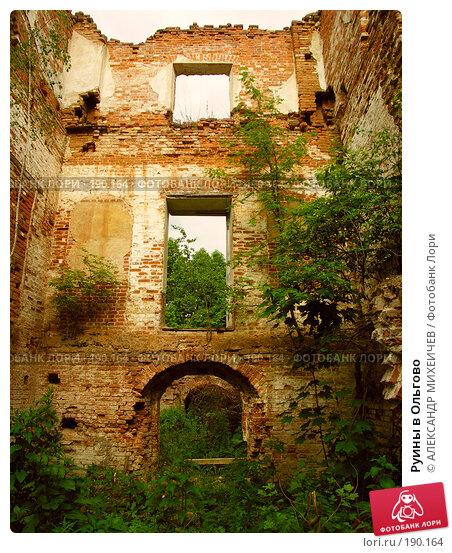 Руины в Ольгово, фото № 190164, снято 17 июня 2006 г. (c) АЛЕКСАНДР МИХЕИЧЕВ / Фотобанк Лори