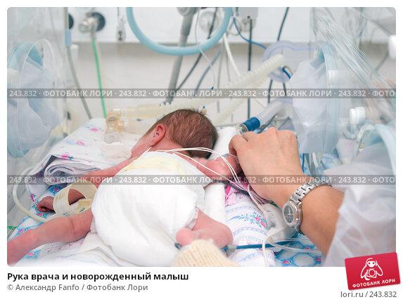 Купить «Рука врача и новорожденный малыш», фото № 243832, снято 21 ноября 2017 г. (c) Александр Fanfo / Фотобанк Лори