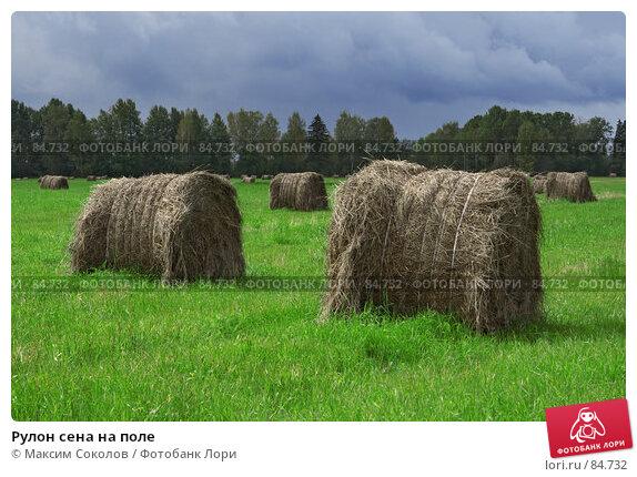 Рулон сена на поле, фото № 84732, снято 13 сентября 2007 г. (c) Максим Соколов / Фотобанк Лори