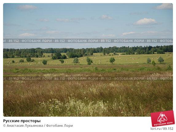 Русские просторы, фото № 89152, снято 23 июня 2007 г. (c) Анастасия Лукьянова / Фотобанк Лори
