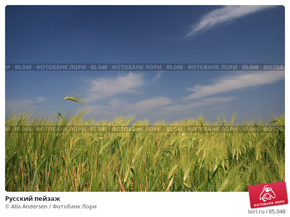 Русский пейзаж, фото № 85048, снято 29 мая 2007 г. (c) Alla Andersen / Фотобанк Лори