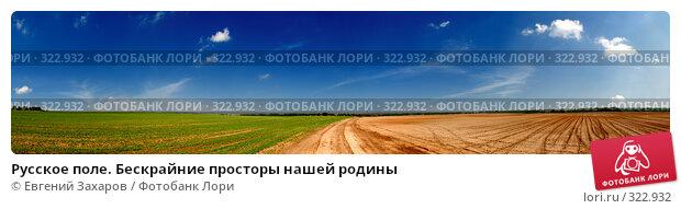 Русское поле. Бескрайние просторы нашей родины, фото № 322932, снято 26 октября 2016 г. (c) Евгений Захаров / Фотобанк Лори