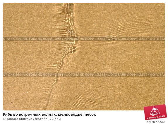 Рябь во встречных волнах, мелководье, песок, фото № 3564, снято 4 июня 2006 г. (c) Tamara Kulikova / Фотобанк Лори