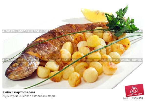 Купить «Рыба с картофелем», фото № 309824, снято 29 мая 2008 г. (c) Дмитрий Ощепков / Фотобанк Лори