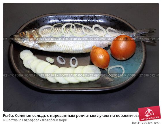Купить «Рыба. Соленая сельдь с нарезанным репчатым луком на керамическом блюде. A fish. Salted herring with onions on a platter.», фото № 27690092, снято 4 февраля 2018 г. (c) Светлана Евграфова / Фотобанк Лори