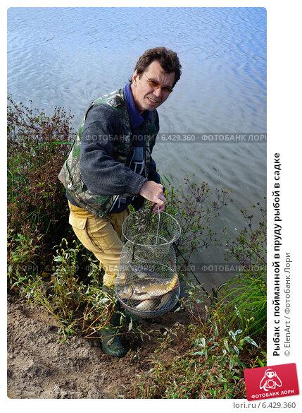пруд садки рыбалка