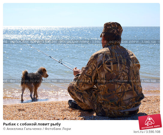 Рыбак с собакой ловит рыбу. Стоковое фото, фотограф Анжелика Гальченко / Фотобанк Лори