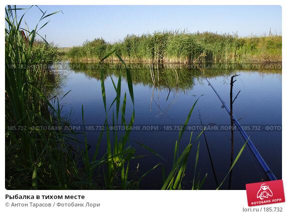 Купить «Рыбалка в тихом месте», фото № 185732, снято 11 августа 2007 г. (c) Антон Тарасов / Фотобанк Лори