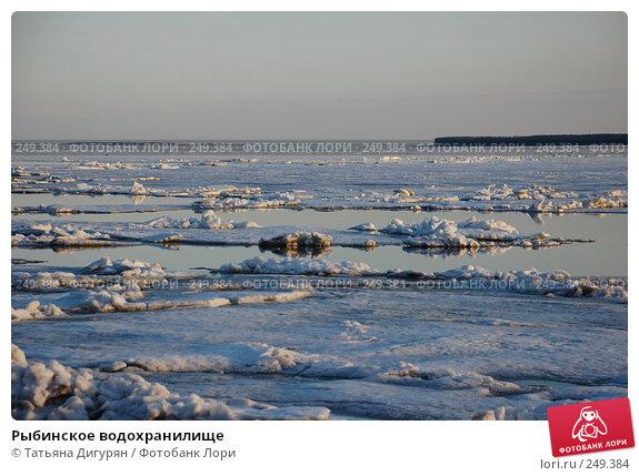 Рыбинское водохранилище, фото № 249384, снято 12 апреля 2008 г. (c) Татьяна Дигурян / Фотобанк Лори