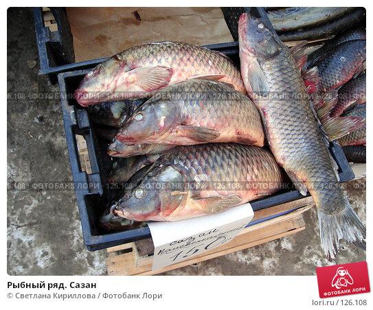 Рыбный ряд. Сазан, фото № 126108, снято 25 ноября 2007 г. (c) Светлана Кириллова / Фотобанк Лори