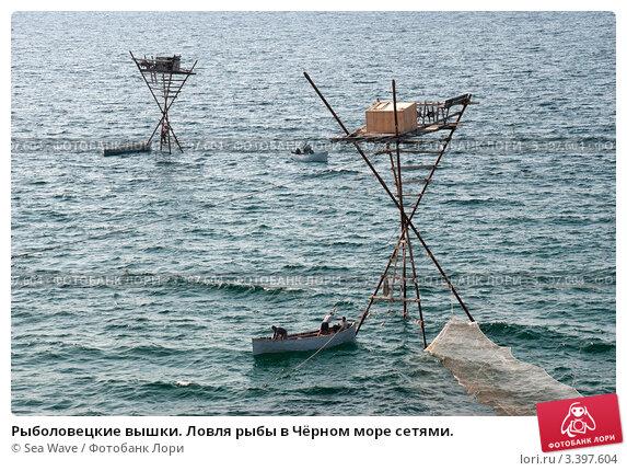 как ловить рыбна море