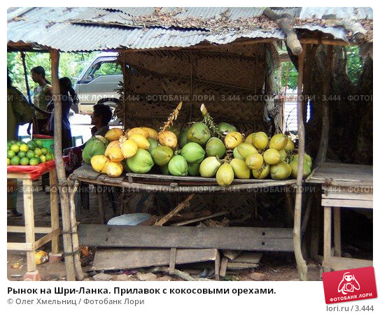 Купить «Рынок на Шри-Ланка. Прилавок с кокосовыми орехами.», фото № 3444, снято 7 мая 2005 г. (c) Олег Хмельниц / Фотобанк Лори