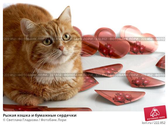 Рыжая кошка и бумажные сердечки, фото № 222852, снято 3 января 2008 г. (c) Cветлана Гладкова / Фотобанк Лори