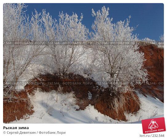 Рыжая зима, фото № 232544, снято 8 февраля 2008 г. (c) Сергей Девяткин / Фотобанк Лори