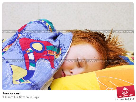 Купить «Рыжие сны», фото № 266916, снято 22 декабря 2006 г. (c) Ольга С. / Фотобанк Лори