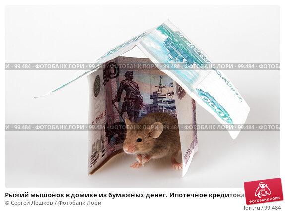 Рыжий мышонок в домике из бумажных денег. Ипотечное кредитование., фото № 99484, снято 24 июля 2017 г. (c) Сергей Лешков / Фотобанк Лори