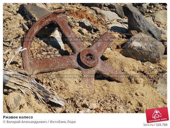 Ржавое колесо, фото № 328788, снято 15 июня 2008 г. (c) Валерий Александрович / Фотобанк Лори