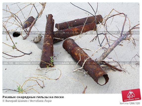 Купить «Ржавые снарядные гильзы на песке», фото № 266120, снято 23 июля 2007 г. (c) Валерий Шанин / Фотобанк Лори